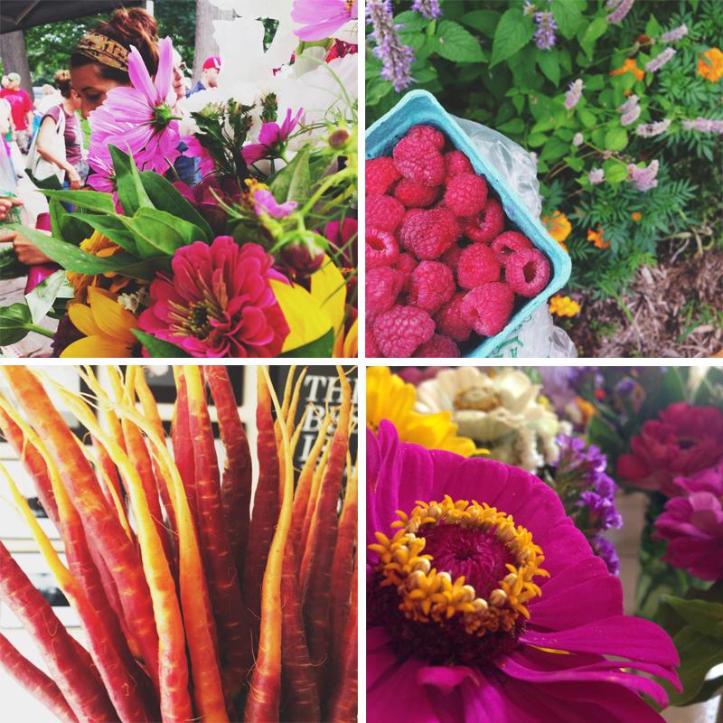 Madison Dane County Farmer's Market
