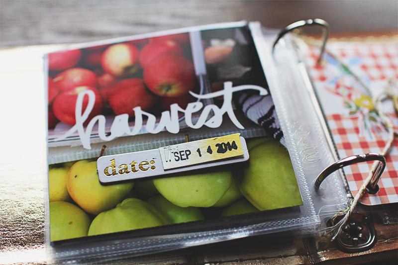 Blog Harvest Mini Album Ali Edwards
